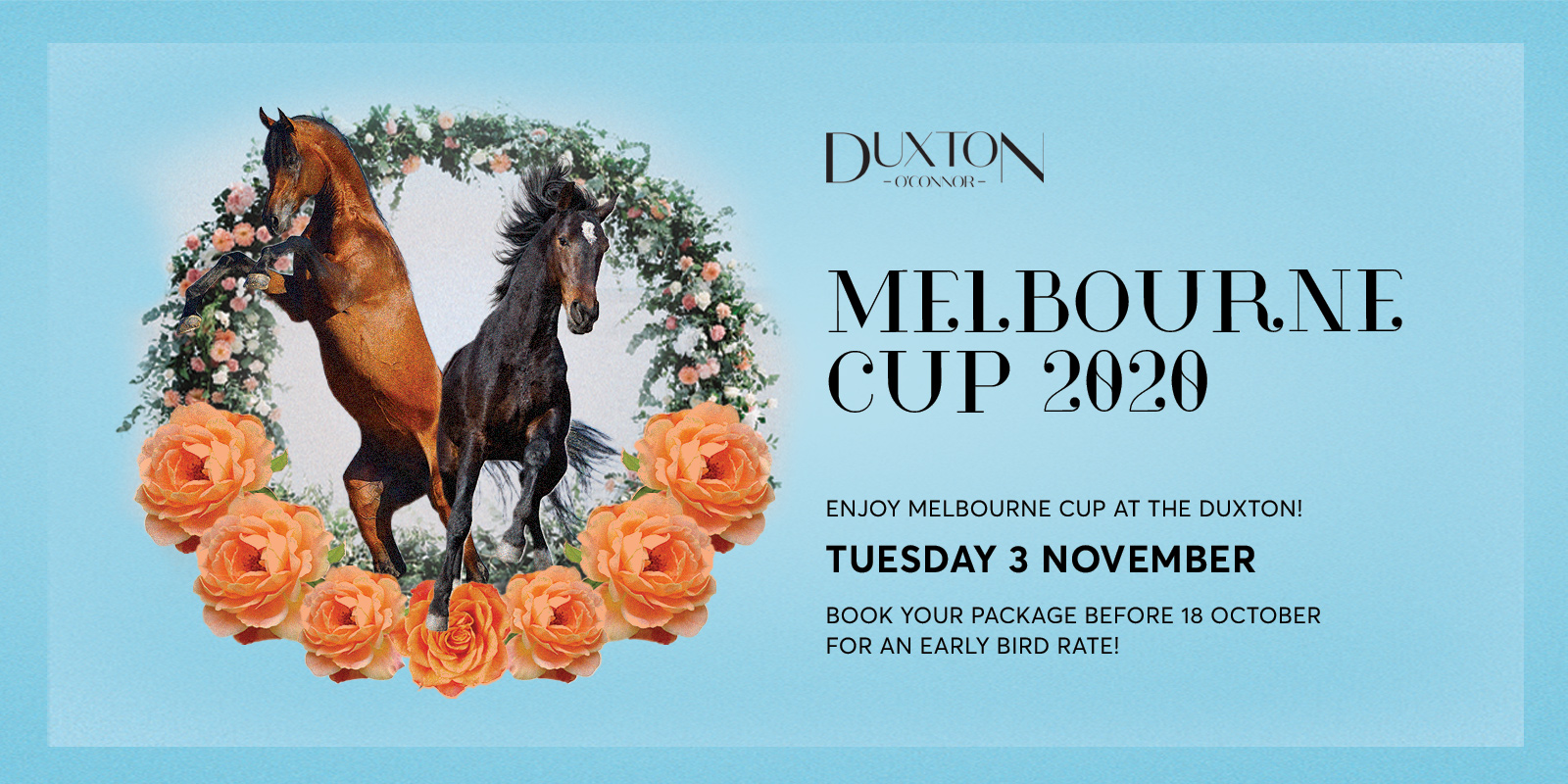 Melbourne Cup 2020 Rectangle